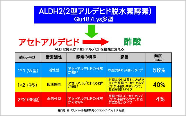 日本人のALDHの遺伝子多型分布