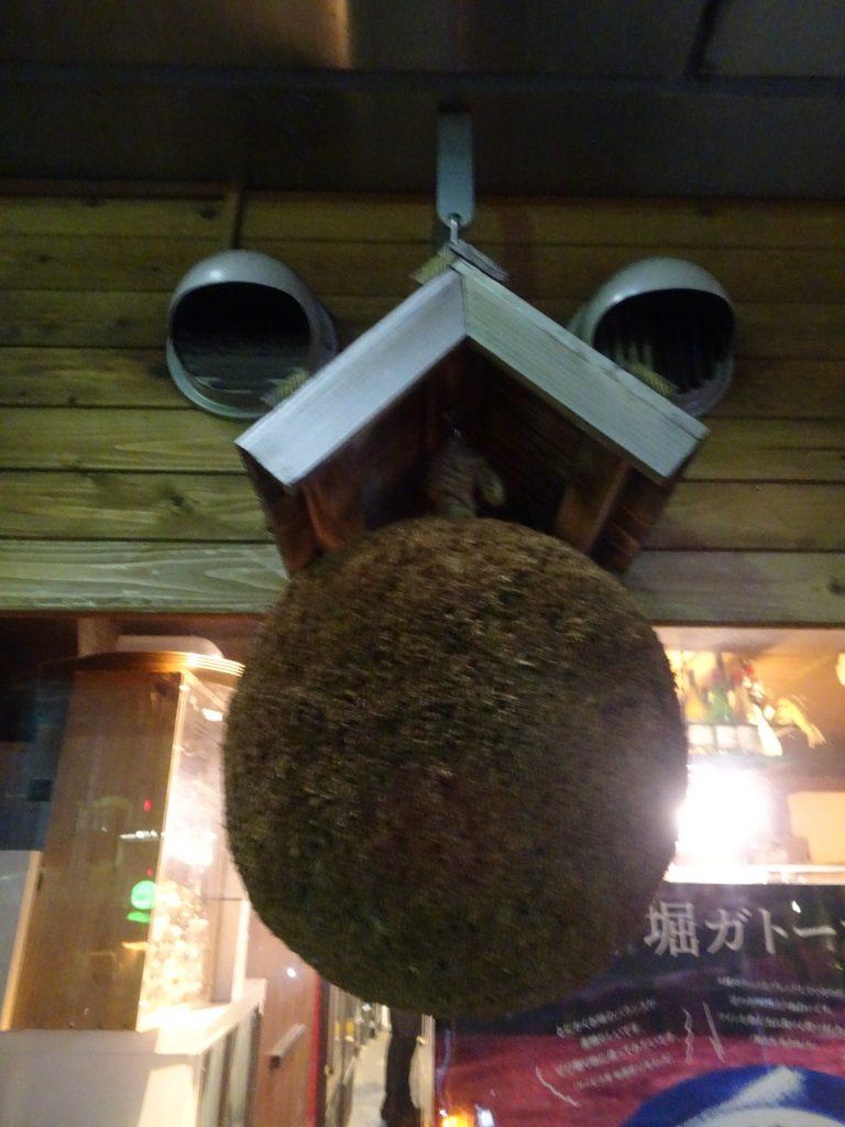 お店の正面に飾られている杉玉