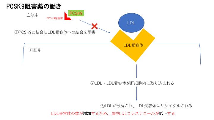 PCSK9阻害薬の作用機序の図説