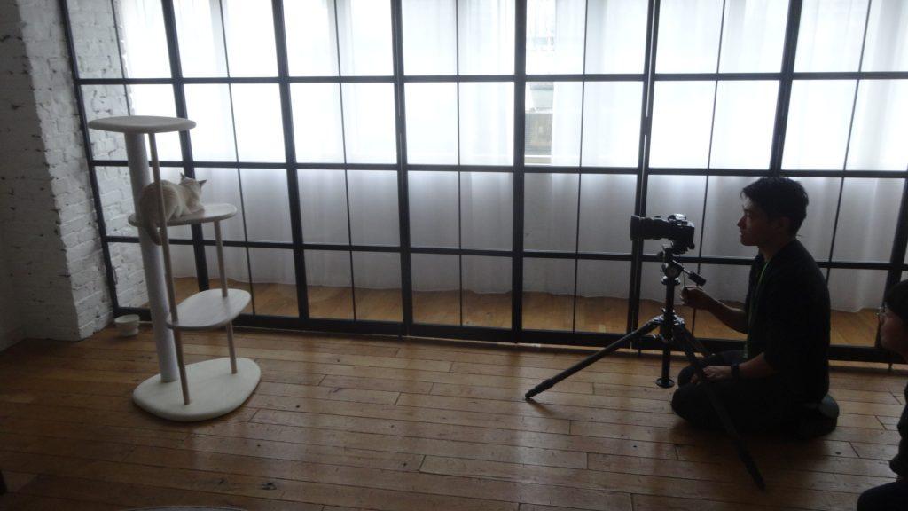 楓の写真を撮るカメラマンさん