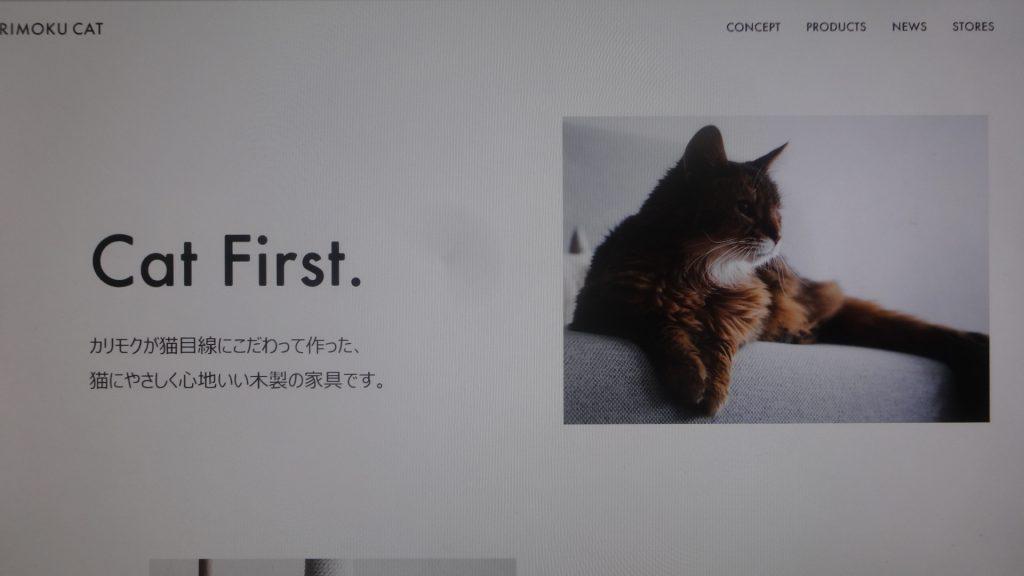 背後霊なネコ?