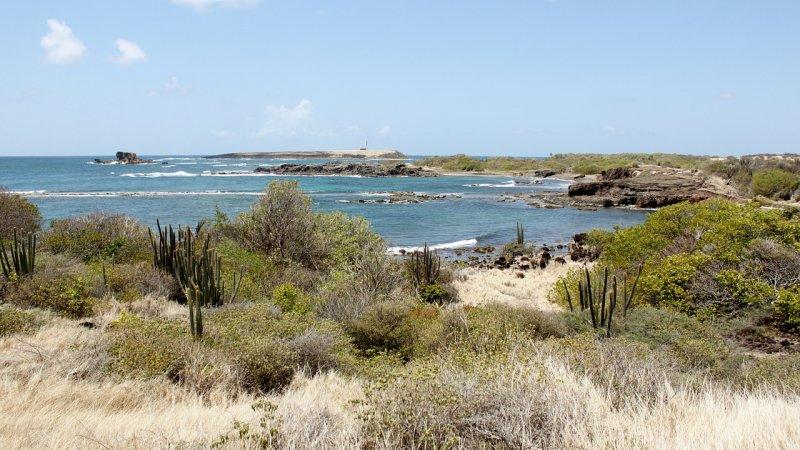 マルティニーク島の風景