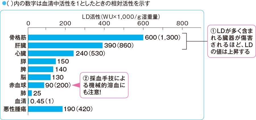 細胞が障害を受けると  血中にあふれ出てきて数値が高くなることを示すグラフ