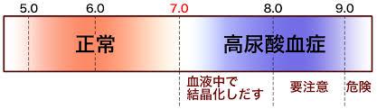高尿酸血症の基準を示す図