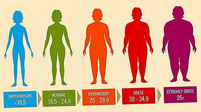 BMI値による肥満の評価を示した図