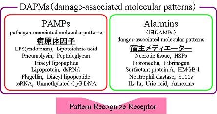 DAMPについて説明した図