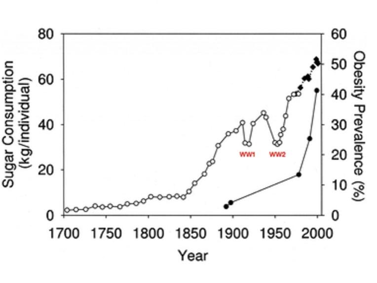 砂糖の消費量の経時的急増を示すグラフ