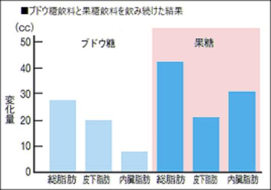 果糖の摂取により内臓脂肪が増えることを示すグラフ