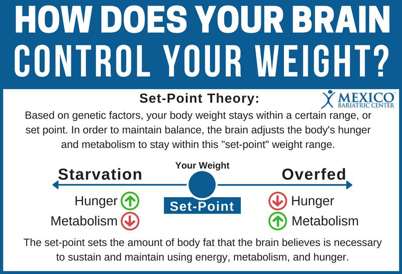 体重のセットポイントについて説明する図