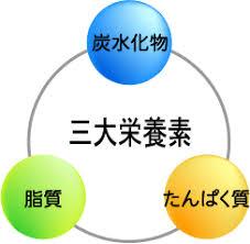 三大栄養素の説明図