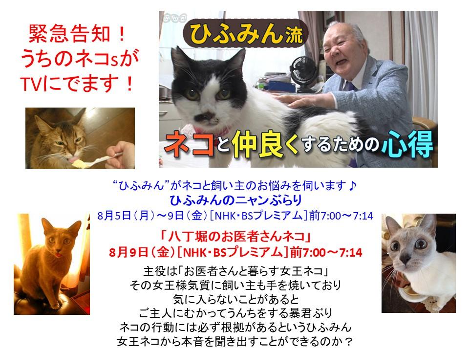 ついに全国放送デビュー!