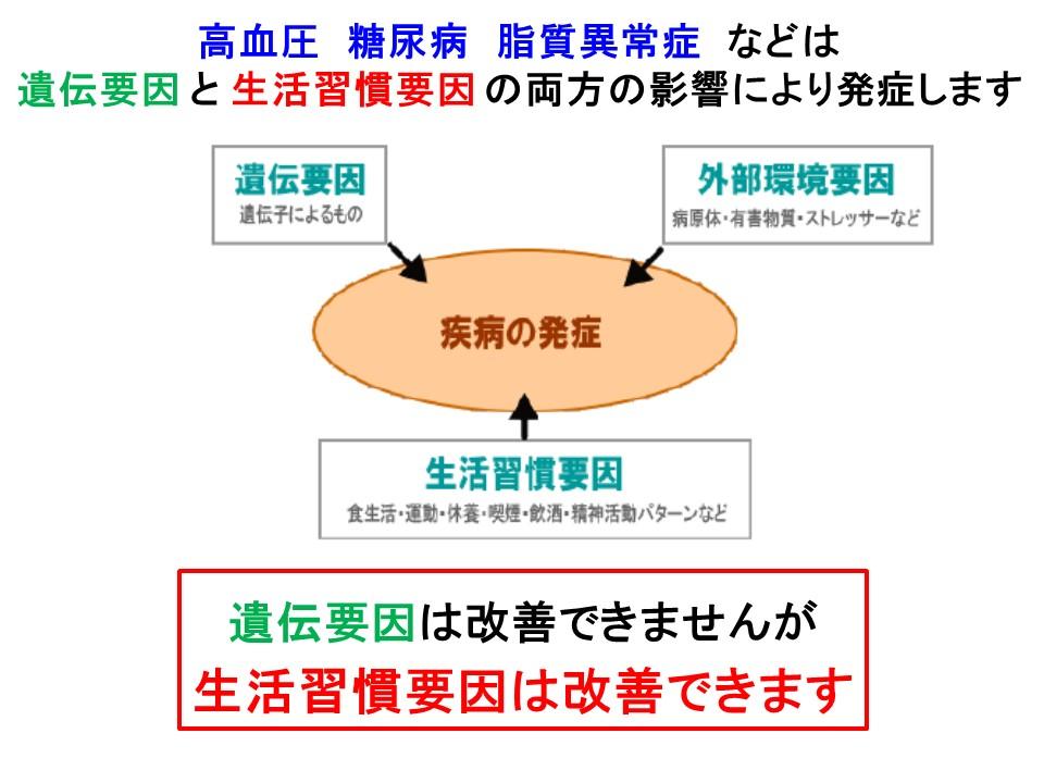 肥満には遺伝と環境の両方の要因が関わることを説明する図