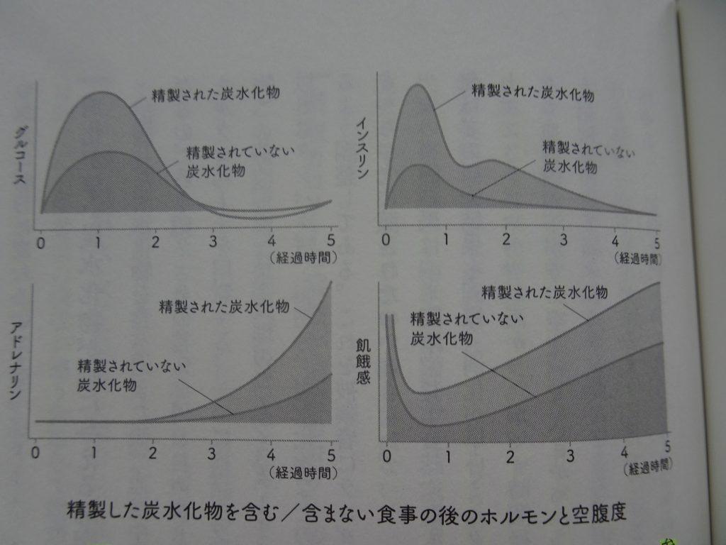 炭水化物摂取によるインスリンや飢餓感の変化を示すグラフ