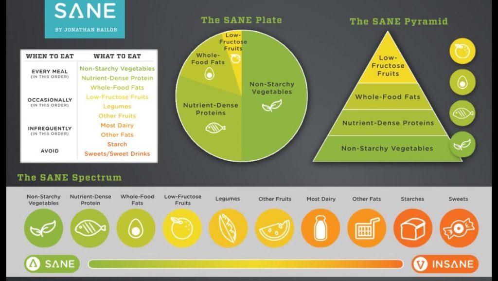 SANEについて説明した図