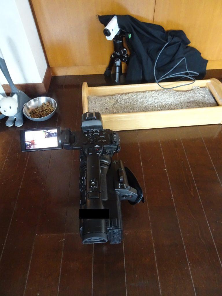 移動式のカメラ