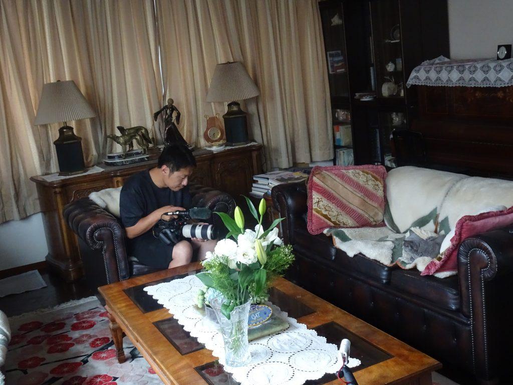 ひとりで悠々とソファの上で悠々とくつろぐデイジー
