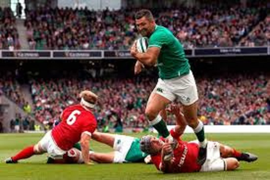 トライを奪うアイルランドの選手