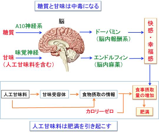 現代の加工食品に多く含まれる成分が依存をひき起こすことを説明する図