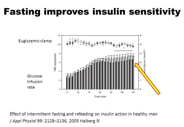 断食によりインスリン感受性が改善することを示すグラフ