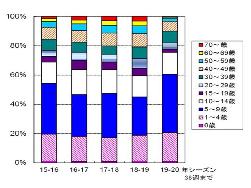 患者さんの年齢層を示したグラフ