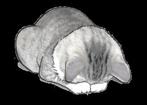 謝るネコのイラスト