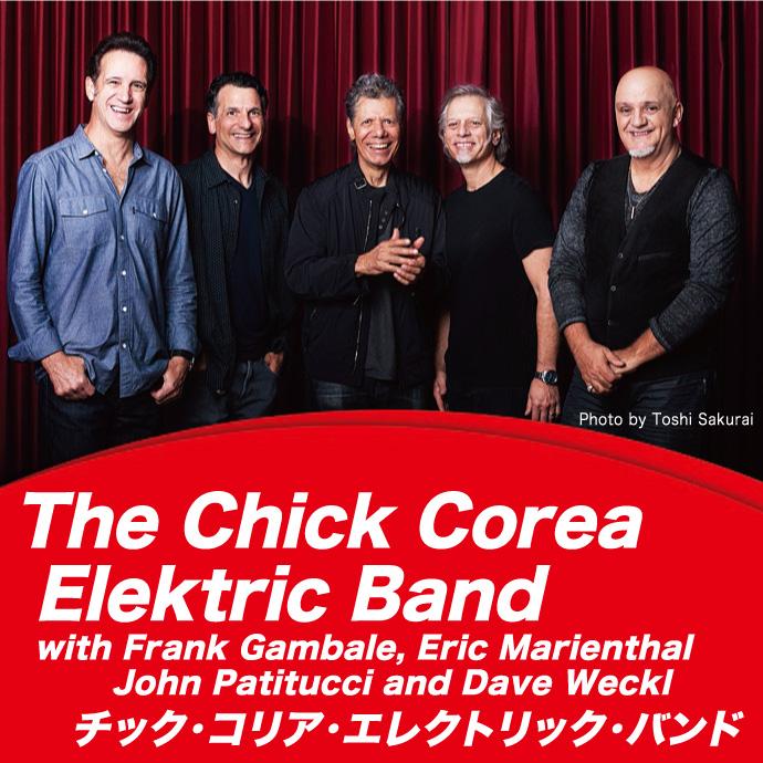 エレクトリック・バンドのメンバーの写真