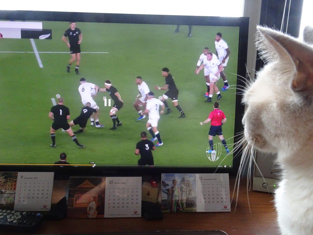 試合の画面を見る楓