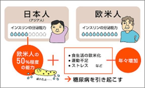 日本人はインスリン分泌量が少ないことを示す図