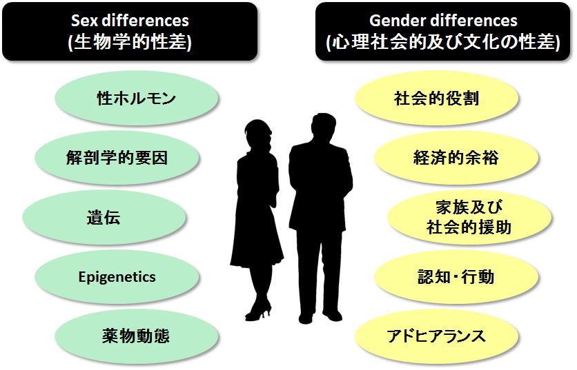 生物学的性差 社会文化的性差の説明図