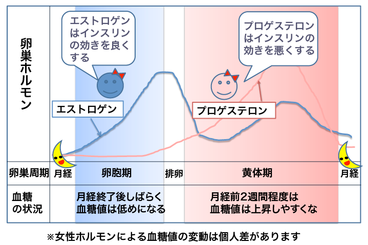 エストロゲンがインスリン感受性を高めることを示す図
