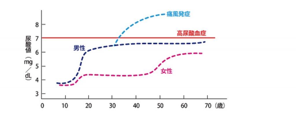 エストロゲンによる尿酸産生抑制を示す図