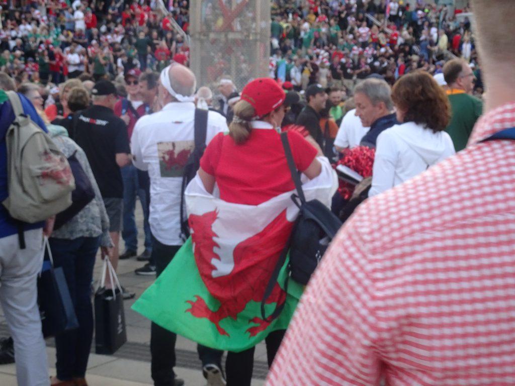 レッドドラゴンの旗を身に纏った人
