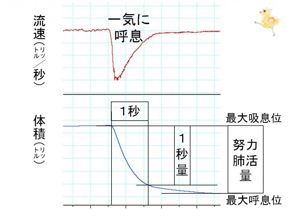 FEV1・1秒量 FVC・努力性肺活量の説明図