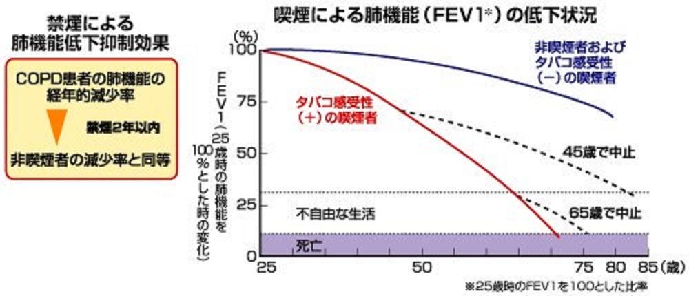 禁煙による改善効果を示すグラフ