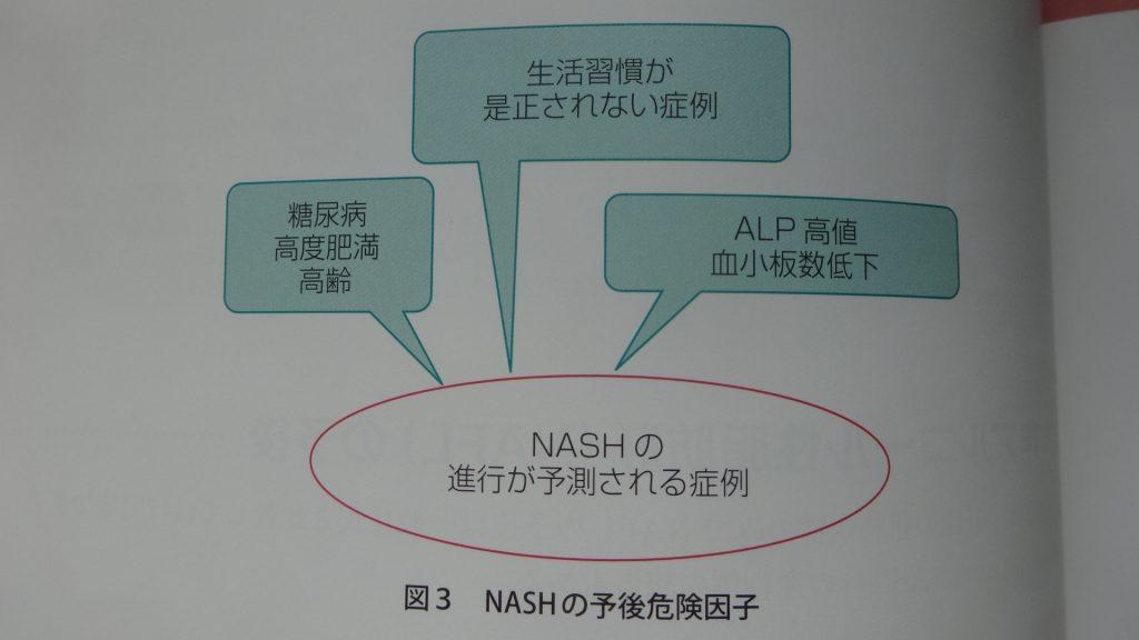 体重増加や糖尿病がNASHの悪化のリスクであることを説明した図