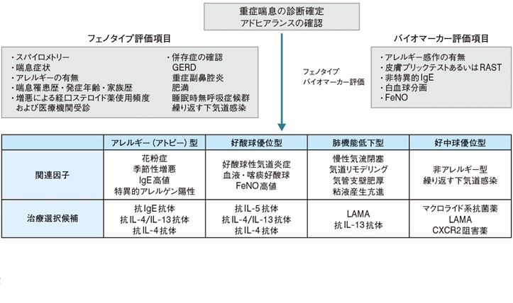 難治性喘息の多様な表現型について解説した図