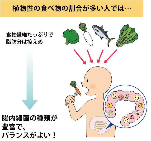 食物繊維の摂取で細菌叢の多様性が高まることを示す図