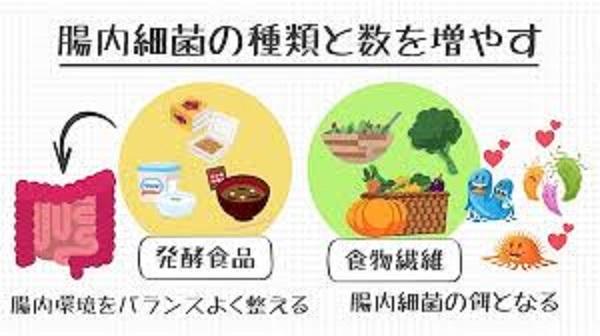 食物繊維や野菜が腸内細菌叢に望ましいことを示す図
