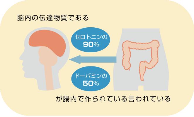 腸内細菌による神経伝達物質の産生を説明する図