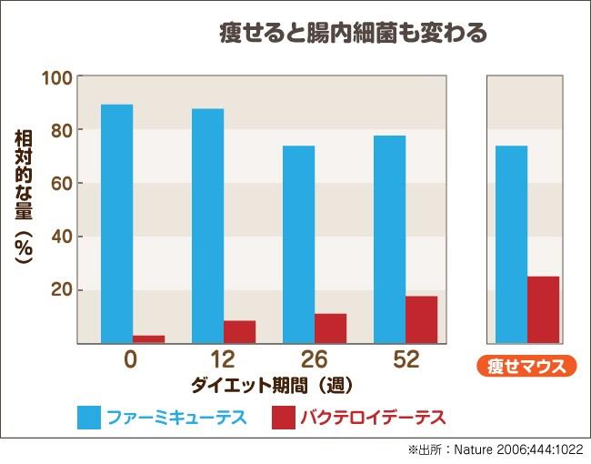 偏りが減量により正常化することを示すグラフ