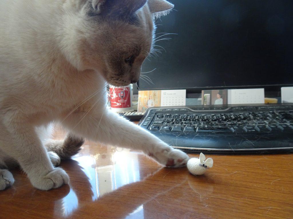 ネズミに左フックする楓