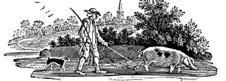 豚とトリュフを探す中世の人が描かれた絵画