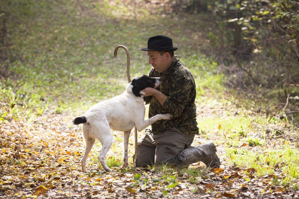 森の中のトリュフハンターとトリュフ犬