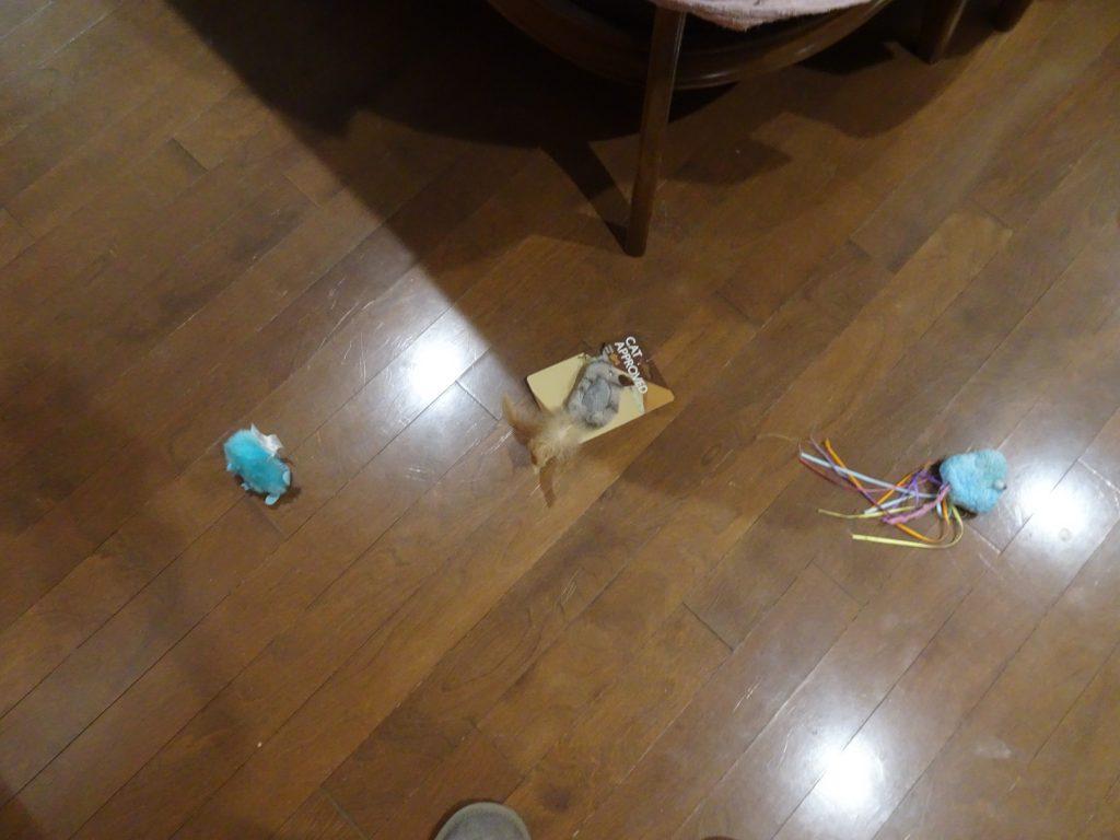 等間隔で並ぶ青いオモチャとトリのオモチャ