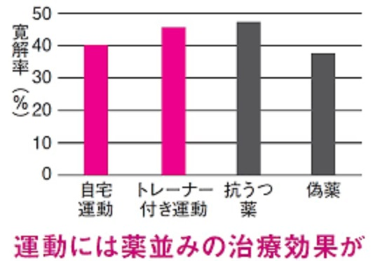 運動の効果を示すグラフ