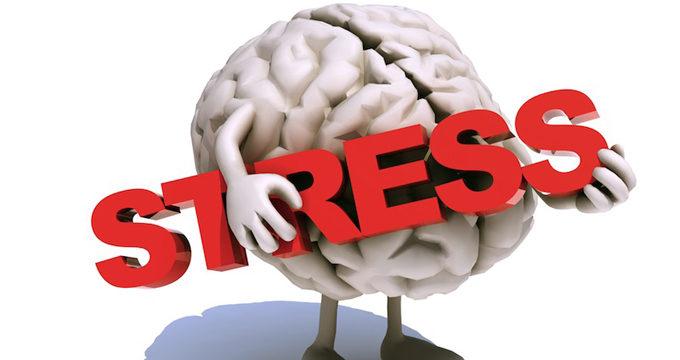 ストレスとは何か?