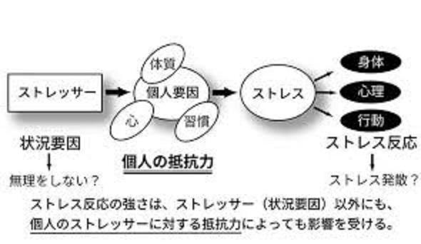 ストレッサーに対する個人の抵抗力について説明する図