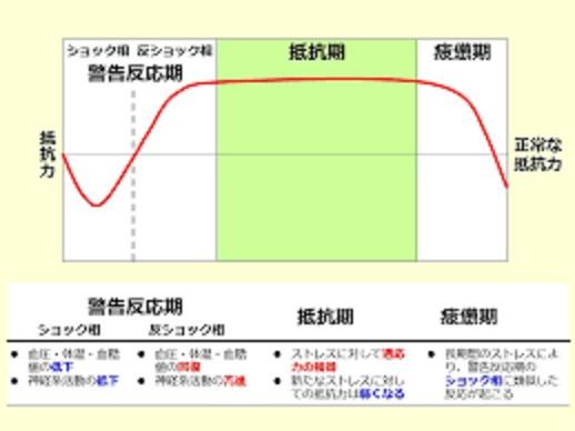 ストレス反応の経過を示す図