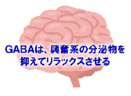 GABAの神経細胞の興奮抑制を説明する図
