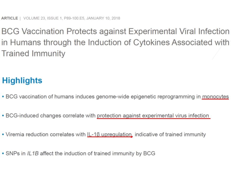 BCGがウイルス感染を制御するという趣旨の論文のタイトル